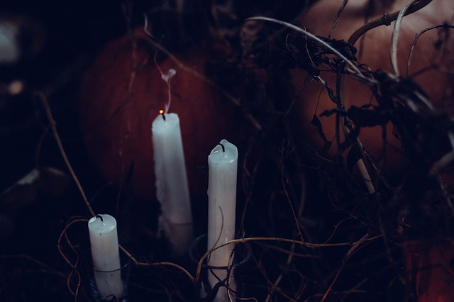 Three white candles in the middle of dried vines.