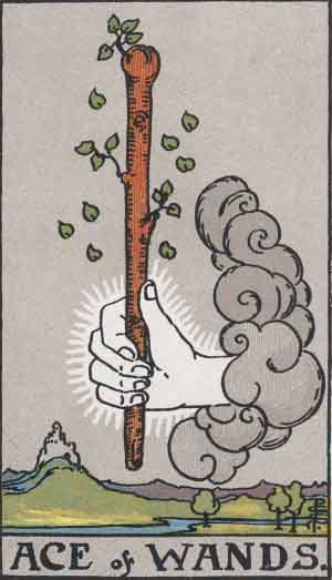 The Ace of Wands card from the Rider-Waite deck.